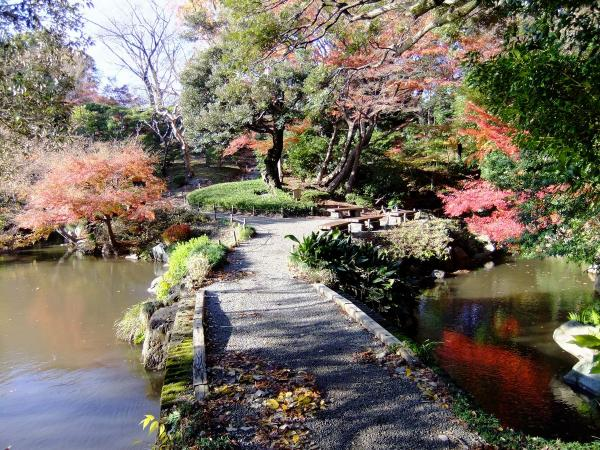旧古河庭園(日本庭園)